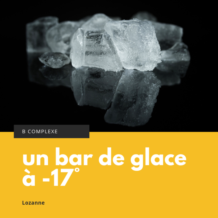 Pleingas,icebar,afterwork,vodka